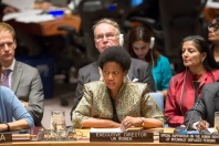 Security Council meeting on Women and peace and  security